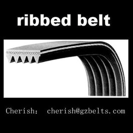 V-Ribbed belt 6pk2590